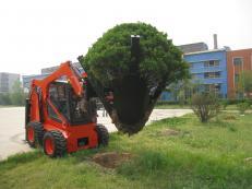 Tree remover